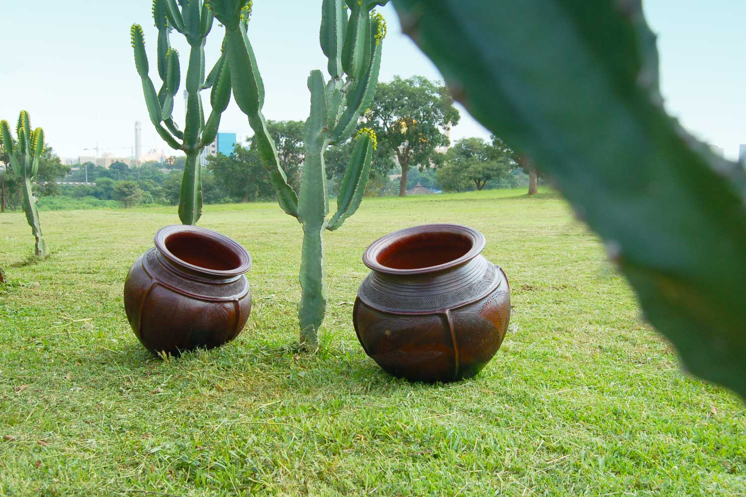 African pots in the Garden